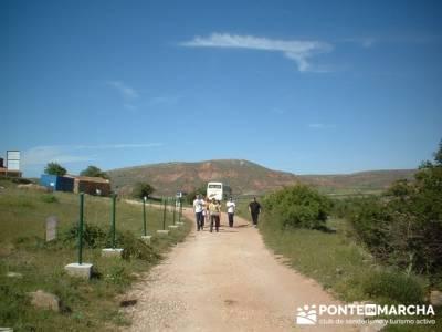 Yacimiento Arqueológico Celtibérico y Romano de Tiermes; puente almudena; rutas en cercedilla; gru